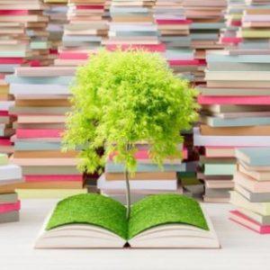 В Кюстендил пренасят книги на ръка в новия им дом