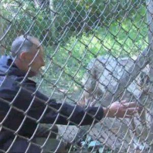 Затварят зоопарка в Кюстендил