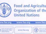 Организацията по прехрана и земеделие на ООН ще подпомага в развитието на селските райони в Северна Македония