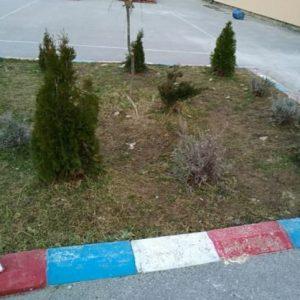 Традиционно засаждане на дървета