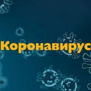 216 са новите случаи на COVID-19 в България, 11 са починалите